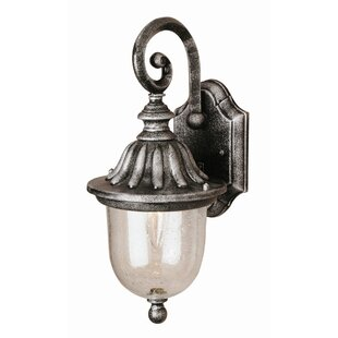 Luna 1-Light Outdoor Wall Lantern