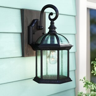Hausmann 1-Light Glass Shade Outdoor Wall Lantern