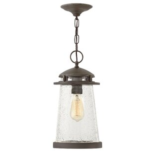 Where buy  Deltona 1-Light Outdoor Mini Pendant By Breakwater Bay