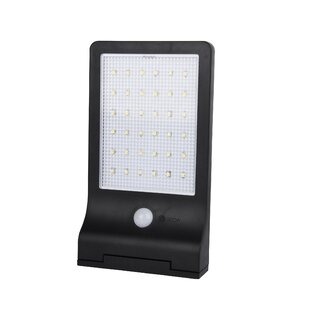Pacific Accents Solar 36 LED Flood Light
