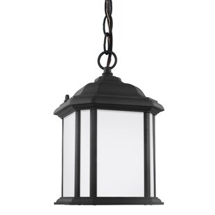 Burtt 1-Light Outdoor Pendant