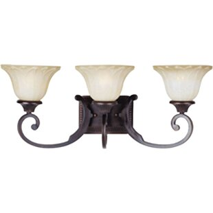 Altitude 3-Light Vanity Light By Darby Home Co