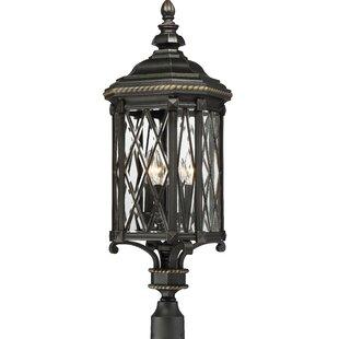 Astoria Grand Bayard Outdoor 4-Light Lantern Head