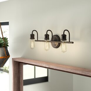 Williston Forge Okehampt 3-Light Vanity Light