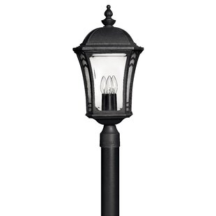 Keltner Outdoor 3-Light Lantern Head by Alcott Hill