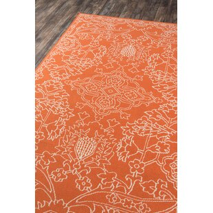 Craine Orange Indoor/Outdoor Area Rug