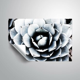 Review Spring Succulent Symphony 1 Wall Mural by ArtWall
