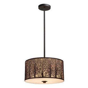 Loon Peak Coso 3-Light Pendant