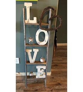 Ladder Bookcase by BarnwoodUSA #1