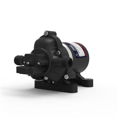 Eccotemp Diaphragm 12V Pump and Strainer Eccotemp