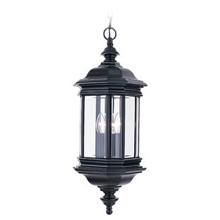 Darby Home Co Burrell 3-Light Outdoor Hanging Lantern