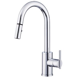Danze® Parma Pull Down Single Handle Kitchen Faucet