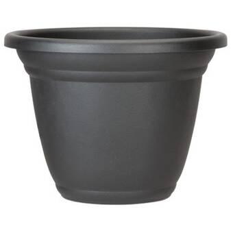 Highland Dunes Elsea 2 Piece Cement Pot Planter Set Wayfair