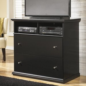 Beaumont 2 Drawer Media Chest by Three Posts