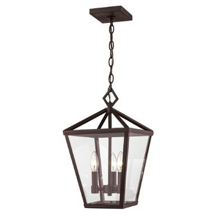 Jacinta 4-Light Outdoor Hanging Lantern
