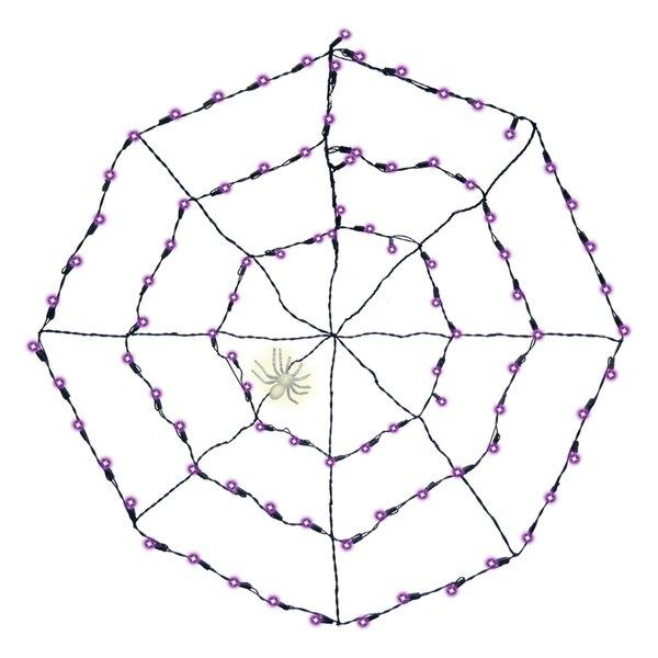 Spider Web Lights Wayfair