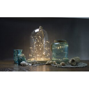 Affordable Allure 30-Light 10 ft. Fairy String Lights By Boston Warehouse Trading Corp