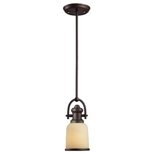 Darby Home Co Claflin 1-Light ..