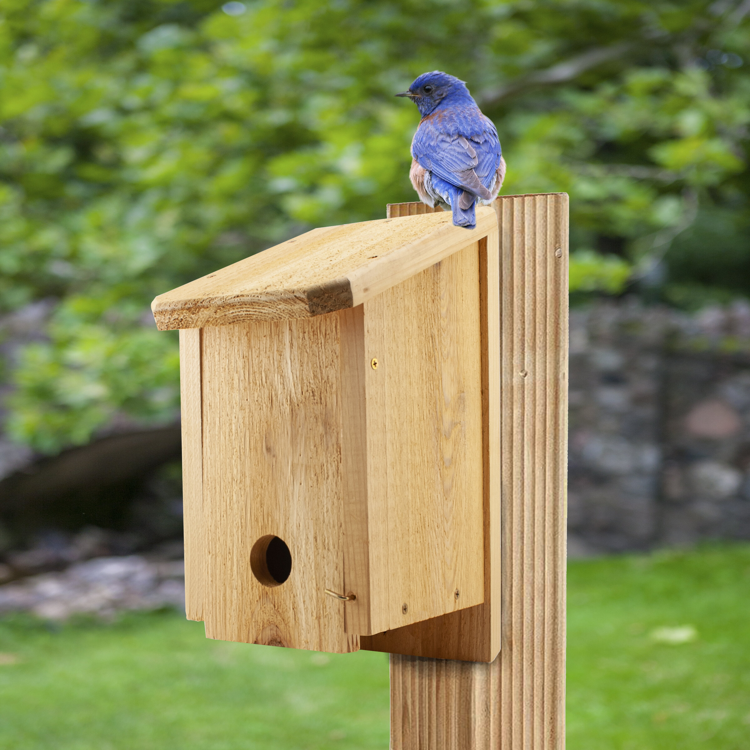 Woodlink Winter Roosting 15 In X 10 In X 6 In Birdhouse Wayfair