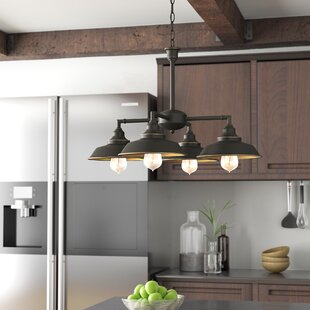 Affordable Alayna 4-Light Shaded Chandelier By Trent Austin Design