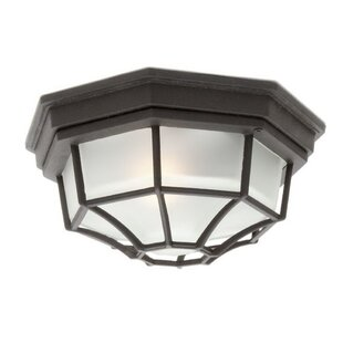 Mickey Outdoor Flush Mount