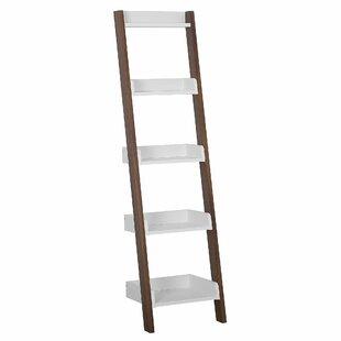 Cobden Ladder Bookcase By Mercury Row