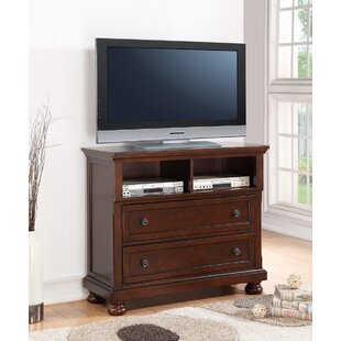 Budget Elkland TV Stand for TVs up to 42 by Darby Home Co Reviews (2019) & Buyer's Guide