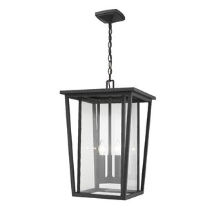 Cahoon 3-Light Outdoor Hanging Lantern by Darby Home Co