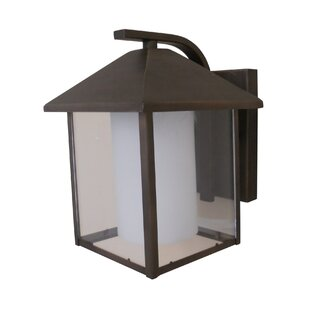 Look for Aamina 1-Light Outdoor Wall Lantern By Whitfield Lighting