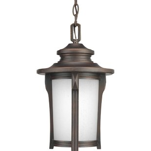 Alcott Hill Triplehorn Glass 1-Light Hanging Lantern