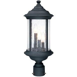 Charlton Home Devizes 3-Light Outdoor Lantern Head