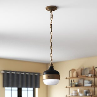 Price comparison Archbald 1-Light Globe Pendant By Wade Logan