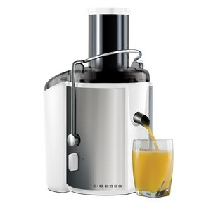 Stainless Steel 2-Speed Electric Juicer