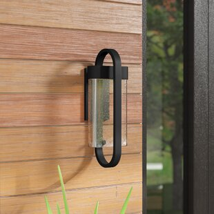 Finn 1-Light Outdoor Sconce