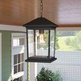 Lovette Black 1 -Bulb Outdoor Hanging Lantern