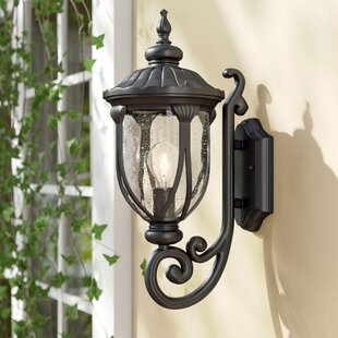 Big Save Angie 1-Light Outdoor Sconce By Fleur De Lis Living