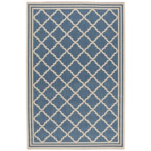 Adler Blue Indoor/Outdoor Area Rug