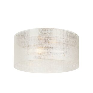 Latitude Run Vieira 2-Light Flush Mount