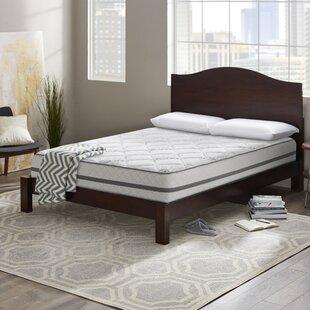 Wayfair Sleep™ Wayfair Sleep..
