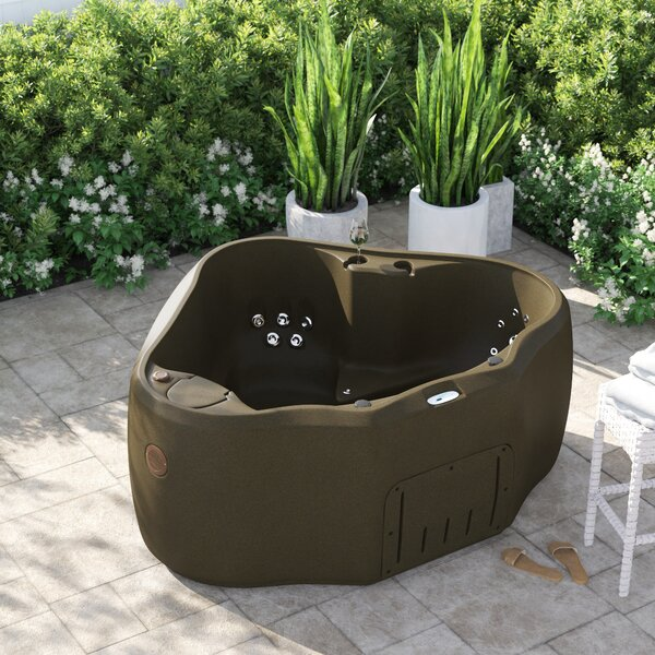 2 Person Indoor Hot Tub Wayfair