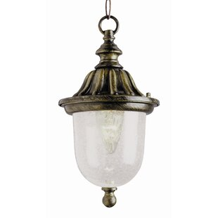 Luna 1-Light Outdoor Pendant by Fleur De Lis Living