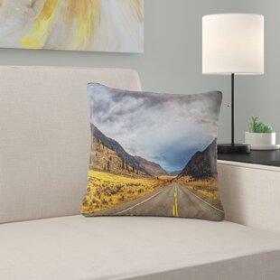 Columbia Pillows Wayfair