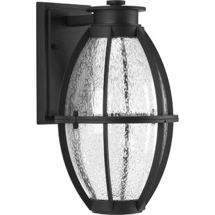 Janay Modern 1-Light Outdoor Wall Lantern