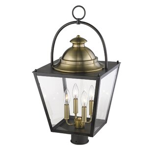 Samarth 4-Light Lantern Head by Darby Home Co