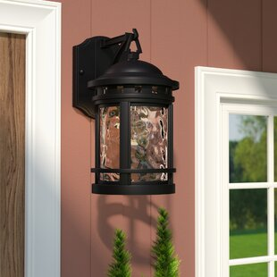 Online Reviews Ashberry 1-Light Outdoor Wall Lantern By Loon Peak