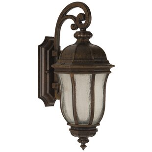 Affordable Oakhill Bronze Glass 1-Light Outdoor Wall Lantern By Charlton Home
