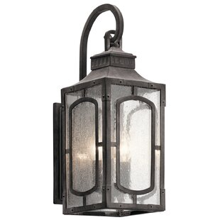 Salena 2-Light Outdoor Wall Lantern by Darby Home Co