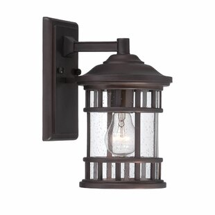 Ferryhill Contemporary 1-Light Outdoor Wall Lantern By Darby Home Co Outdoor Lighting