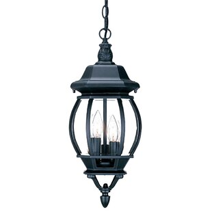 Fleur De Lis Living Reva 3-Light Outdoor Hanging Lantern