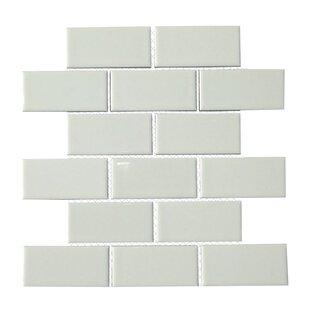 Clique 2 X 4 Porcelain Subway Tile In White